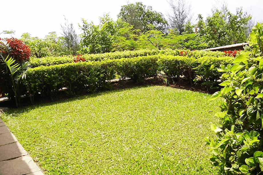 2-br-villa-garden-3