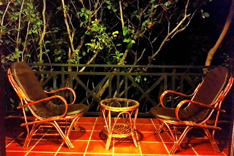 tree-top-nest-balcony